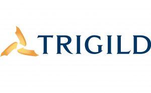 TrigildLogo-300x186
